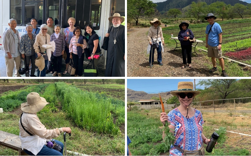 https://arcadia-website.cdn.prismic.io/arcadia-website/65e7c840e216498b0a37041f8885733f169fb99e_aah-kahumanu-farms-collage.jpg